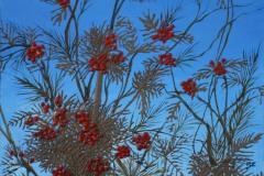 arioso-albero-60x70-2003